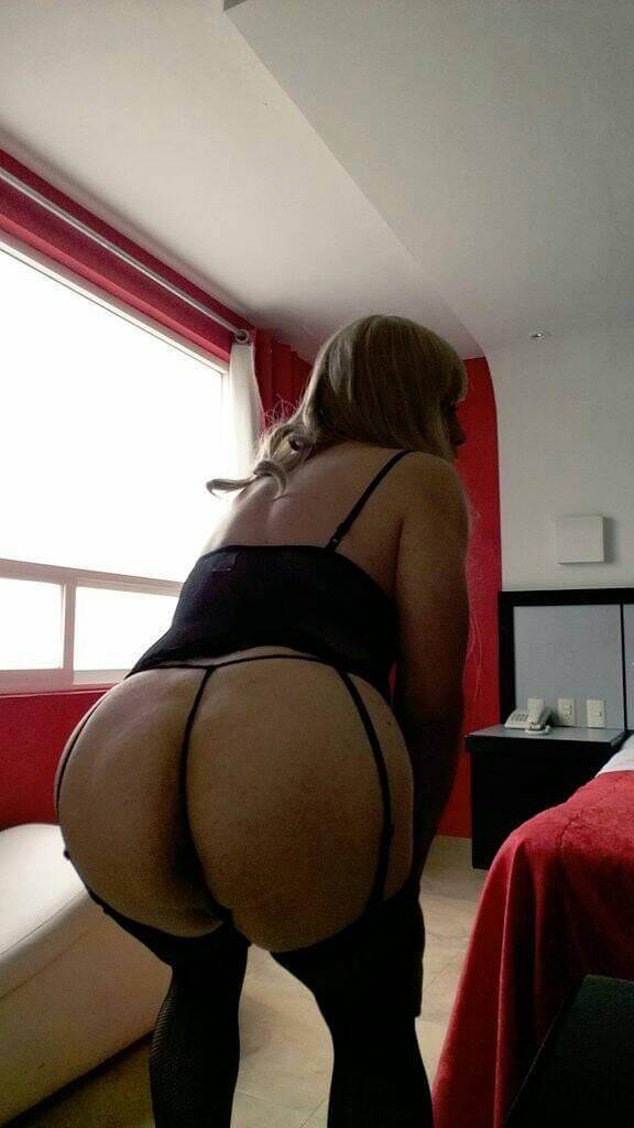 sofia liliana big ass sissy
