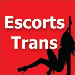 banner escort travesti