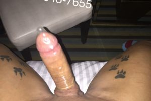 Alexa Exotica big dick trans