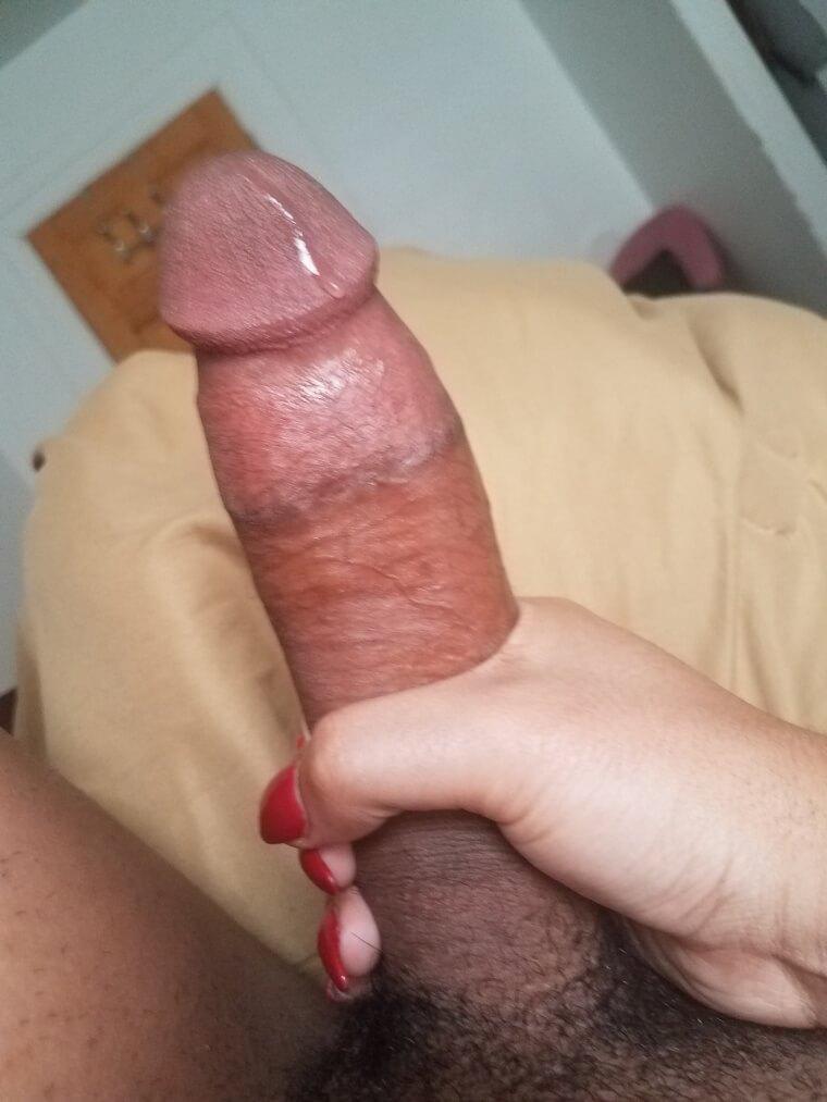 Melody Monae transgirl cock